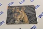 Defender Коврик для мыши Wild Animals 220x180x2 мм, ассорти
